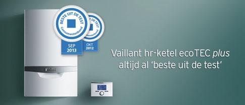 vailliant2013